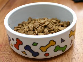 https://cf.ltkcdn.net/dogs/images/slide/90288-799x601-Kibble-bowl.jpg