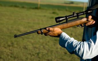https://cf.ltkcdn.net/dogs/images/slide/90313-850x532-Rifle.jpg
