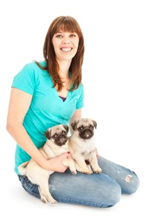 Pug breeder with puppies