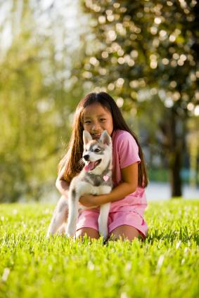 Girl hugging puppy on lawn