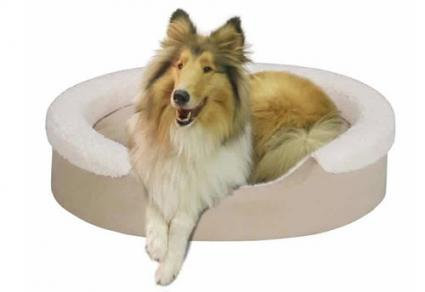 Soft Touch Faux Suede Oval Cuddler dog bed