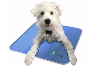 Green Pet Self-Cooling Pet Pad