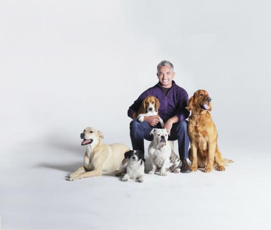 Dog Whisperer Cesar Millan; Photo Credit: Gio Alma