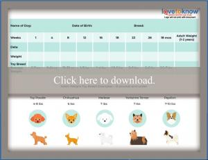 Toy Breed Puppy Weight Chart