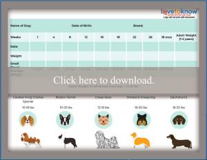 Small Breed Puppy Weight Chart
