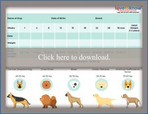 Large Breed Puppy Weight Chart