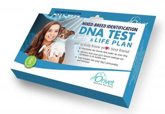Emmy's Best Complete Dog DNA Test Breed