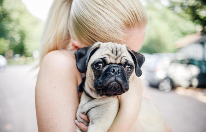 Woman cuddling a pug puppy