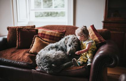 Small girl and huge Irish Wolfhound