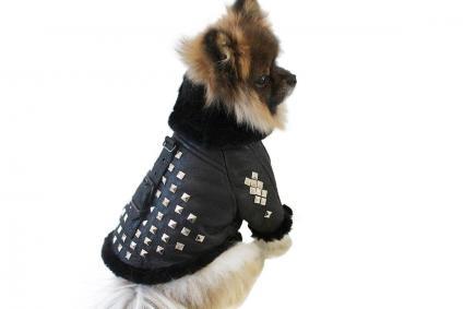 Black Studded Shearling Dog Coat