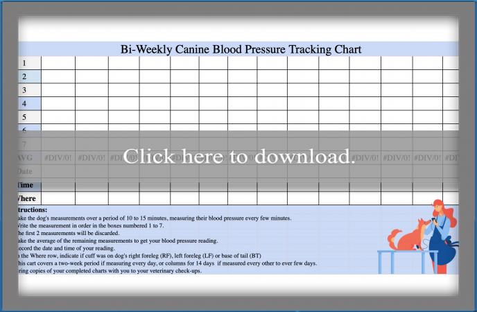 Canine Blood Pressure Chart in Microsoft Excel