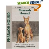 Pharaoh Hound by Juliette Cunliffe
