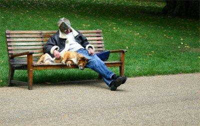 Park Bench Companionship