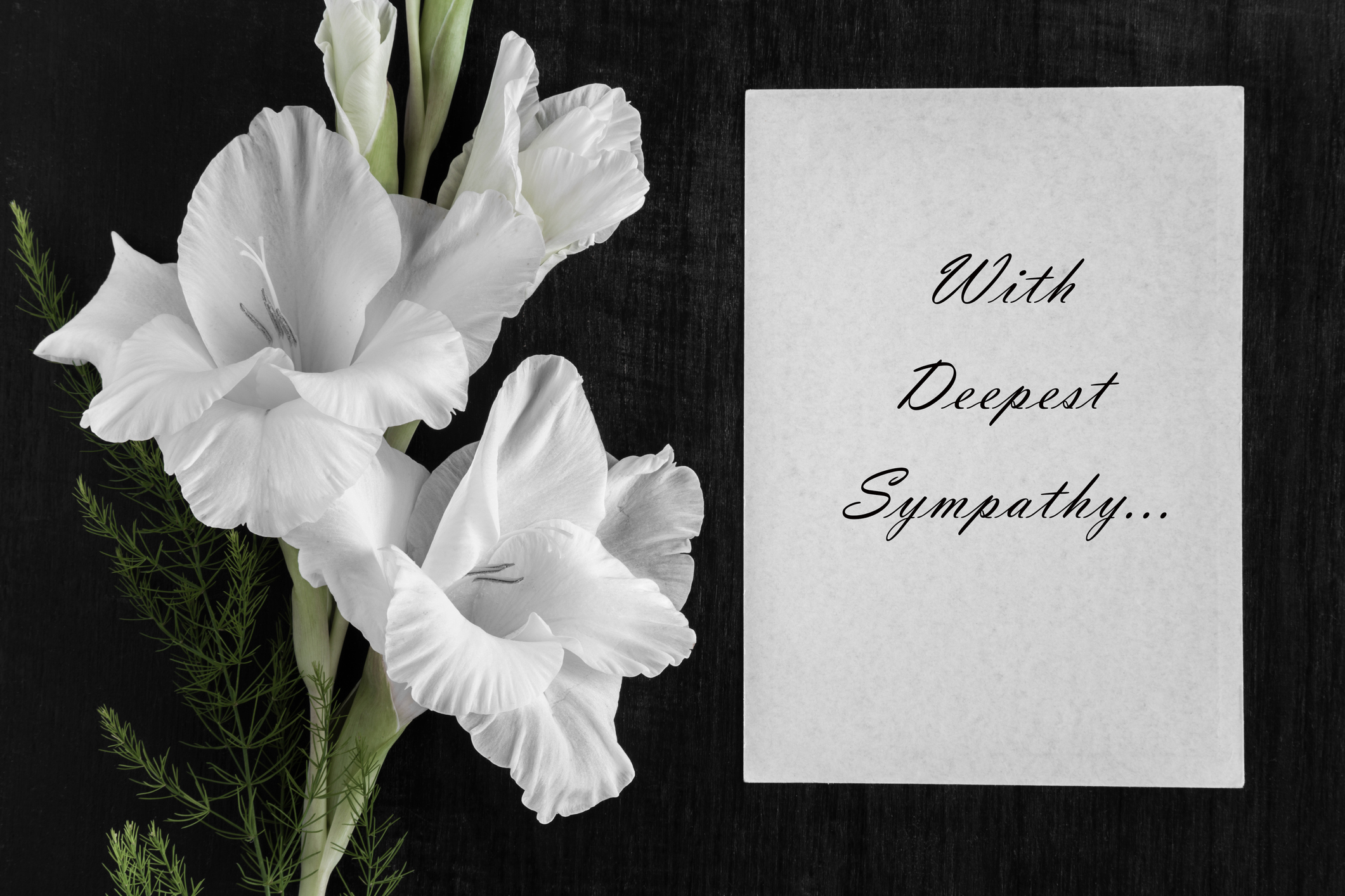 Sympathy messages for funeral flowers lovetoknow izmirmasajfo Image collections