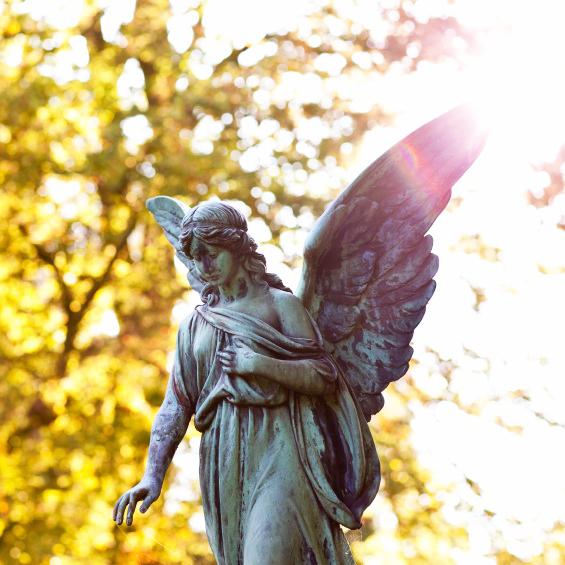 74462-849x565-angel1.jpg