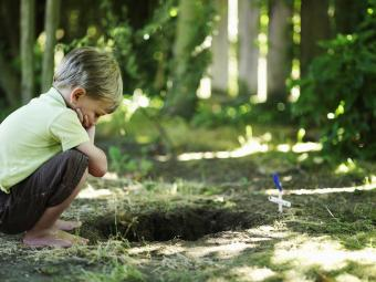Boy looking into grave of pet