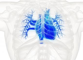 Congestive Heart Failure Stages of Dying