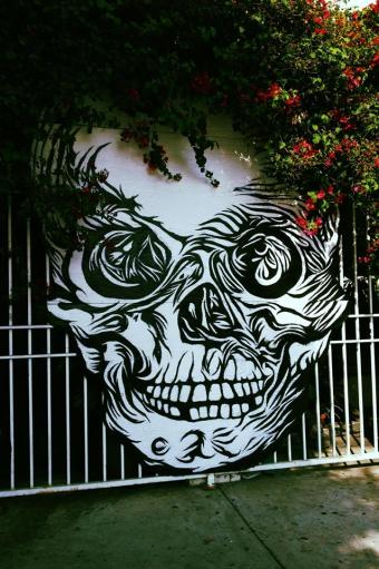 hand-painted skull outside museum