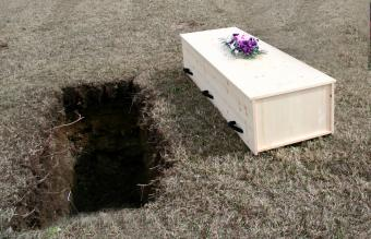 Biodegradable Coffin Options and Costs