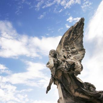 https://cf.ltkcdn.net/dying/images/slide/245084-850x850-soaring-the-sky.jpg