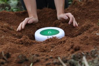 Planting a Bios Urn