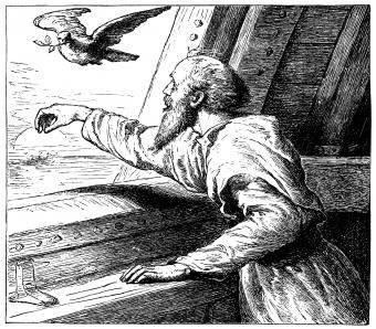 The dove returning to the ark