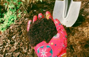 Digging Into Human Composting: The Facts and Process
