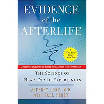 Life After Life: The Investigation of a Phenomenon
