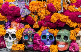 20+ Unique Day of the Dead Greetings