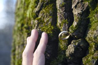 Hand close to a wedding ring on an old tree bark