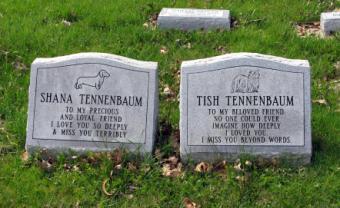 A view of a pet cemetery.