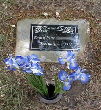 https://cf.ltkcdn.net/dying/images/slide/74582-480x522-Emily%27s_grave_1.jpg