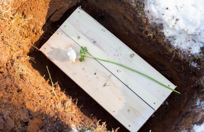 pet casket in the ground