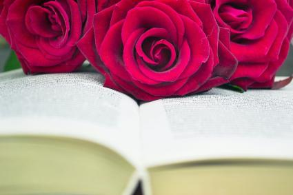 Open book and red roses