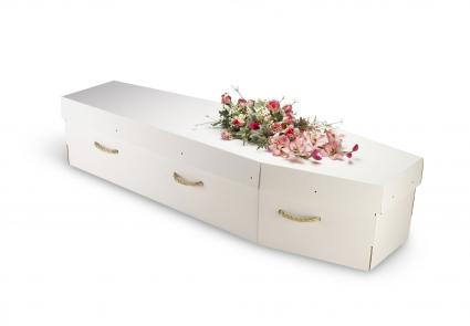 Cardboard bio-degradable eco coffin