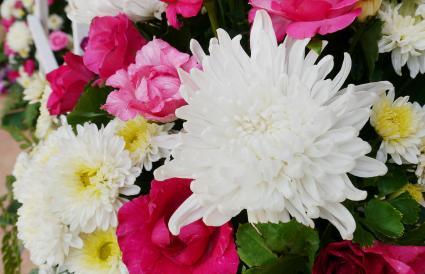White Chrysanthemum in flower bouquet