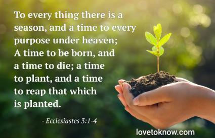 Ecclesiastes 3:1-4