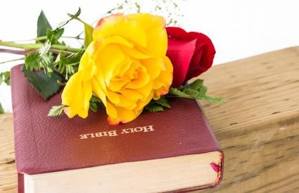 Flowers over a Bible