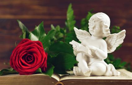 Angel guardian and red rose