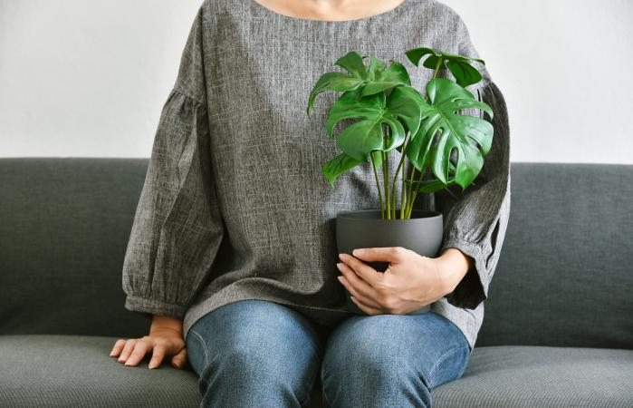 Woman sitting with sympathy plant