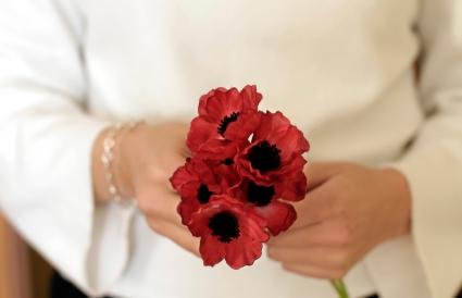 Hands holding red poppy flowers