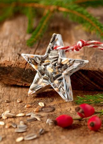 Birdseed Christmas ornament