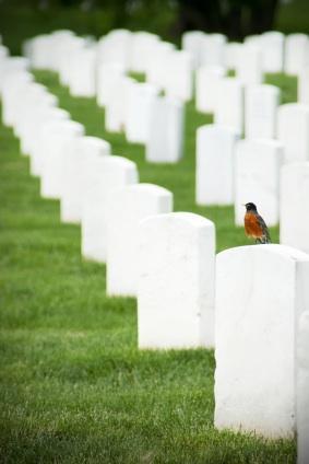 arlington cemetery facts