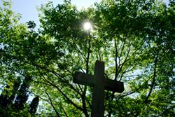 Green burial is an ecologically friendly and legal choice.