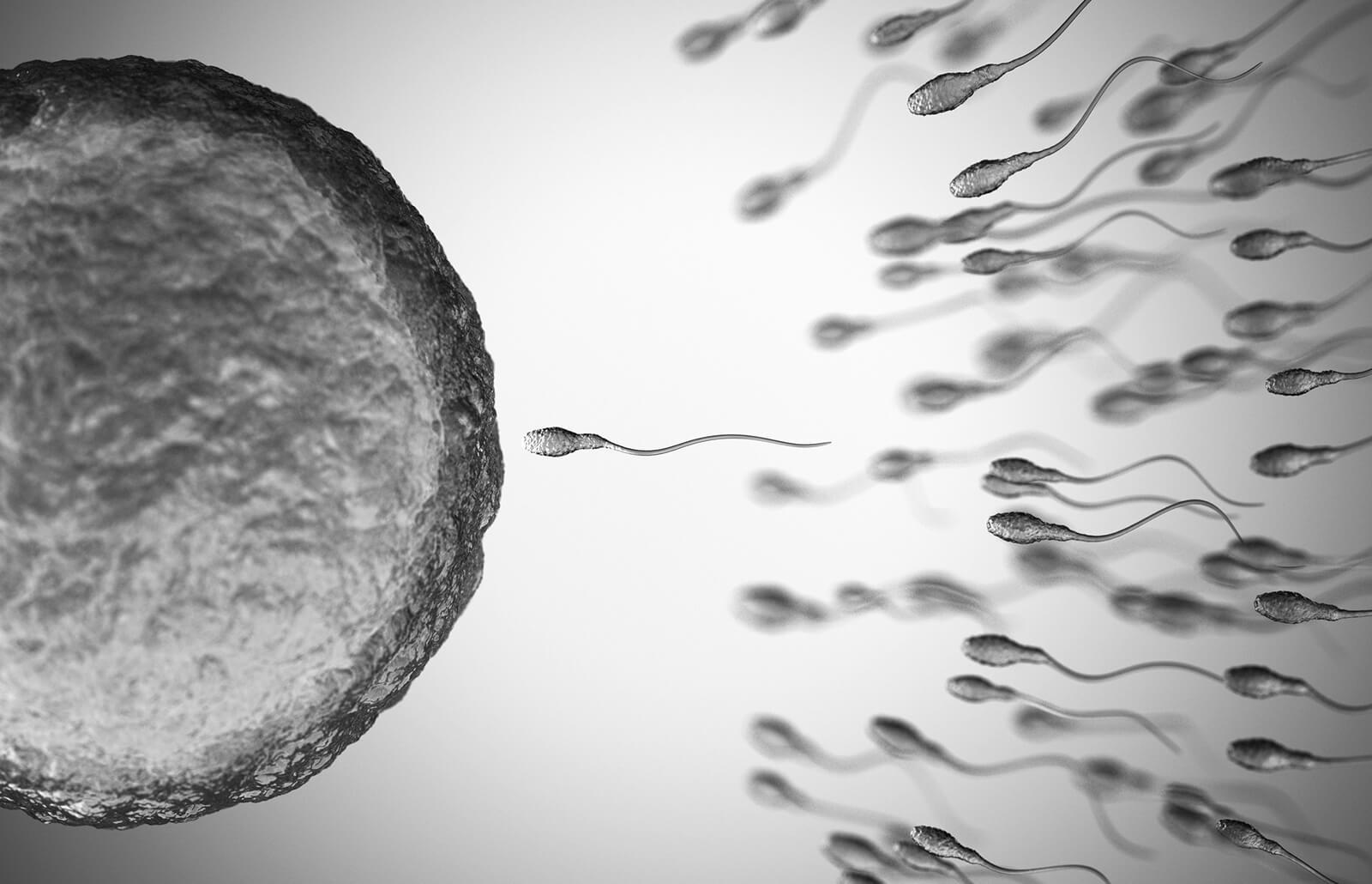 bd9c35e4a ¿Puedes quedar embarazada en tu período? | LoveToKnow