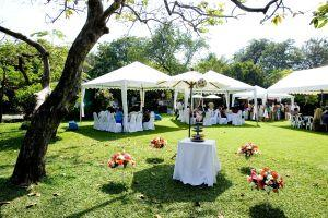 Engagement party in a garden setting