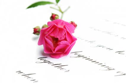 Rose laying on a romantic proposal poem