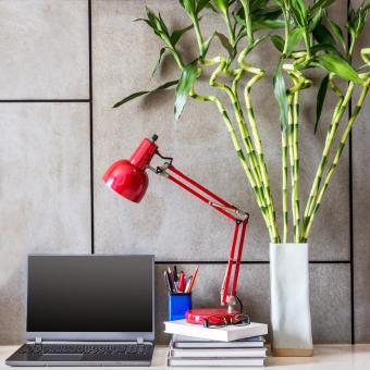 https://cf.ltkcdn.net/es-feng-shui/images/slide/244849-850x850-bamboo-at-the-office.jpg