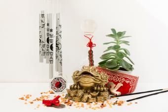 Rana del dinero en un ambiente feng shui