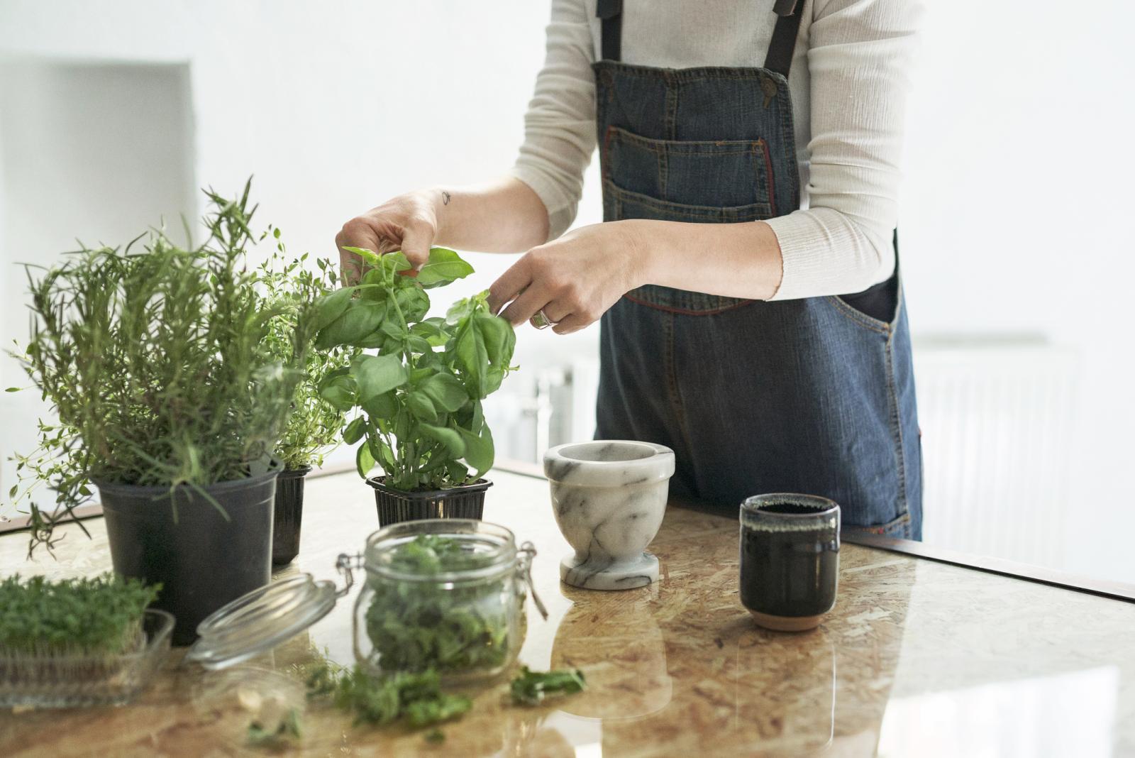 Mujer cuidando a macetas con hierbas